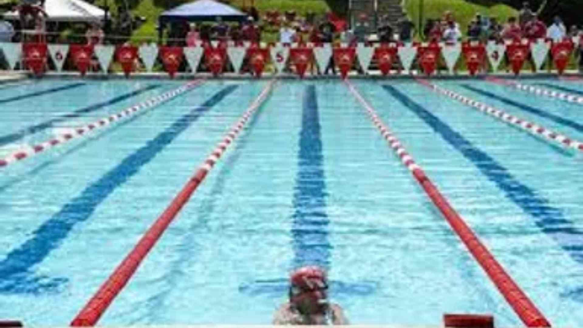 cheverly dolphins swim team
